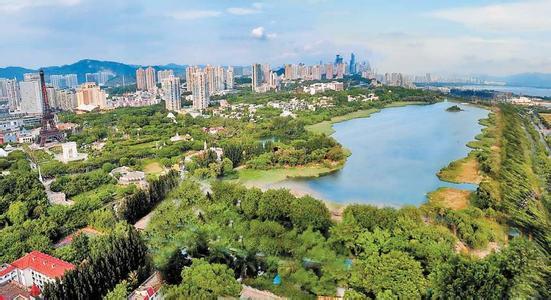 """此外,梧桐山风景区管理处将着力抚育和打造""""高山杜鹃城中花海"""";仙湖"""